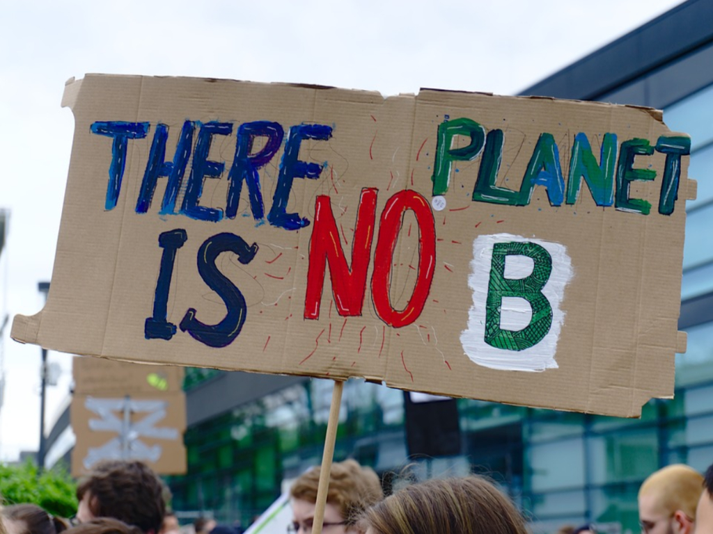 image of a climat protest sign saying there is no planet b
